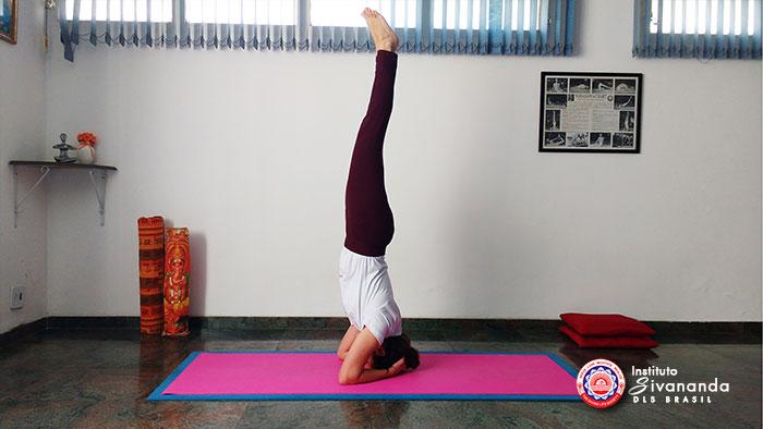 Yoga 12 Posturas Principais 2