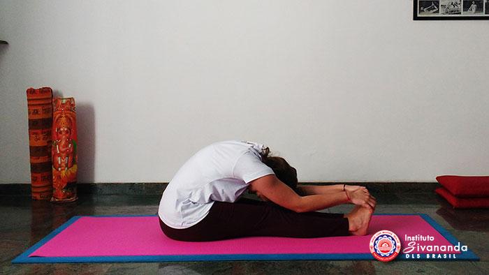Yoga 12 Posturas Principais 6